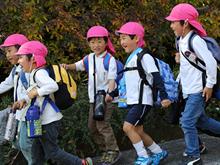 つしま幼稚園:自然とのかかわり